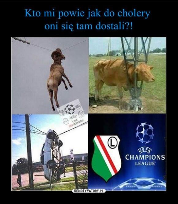 . /www.demotywatory.pl /