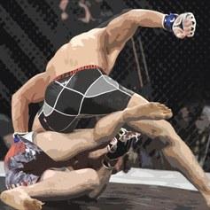 Sporty walki: DSF Kickboxing Challenge: Twierdza
