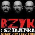 Bzyk i Sztajemka: No i jak?