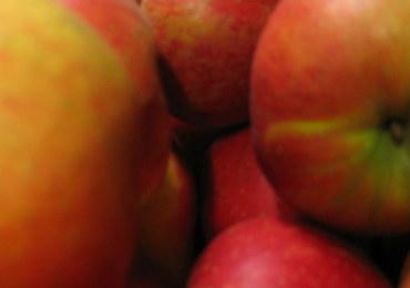 """Polskie jabłka będą eksportowane do Chin? """"Są nowe nisze, nowe kierunki"""""""
