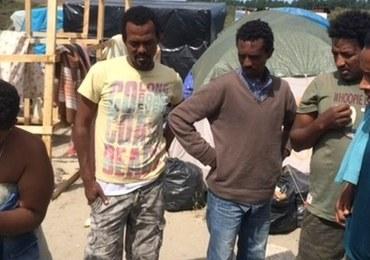 """Organizacje charytatywne chcą wstrzymać likwidację """"Nowej Dżungli"""" - obozowiska w Calais"""