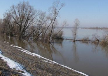 Budowa zbiornika przeciwpowodziowego pod Raciborzem wstrzymana