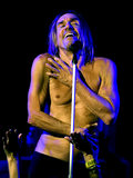 Nagie obrazy Iggy Popa trafią do muzeum w Nowym Jorku