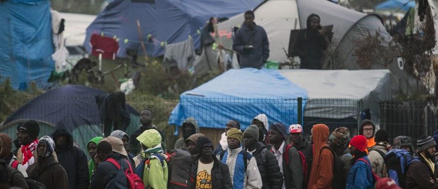 """Ruszyło niszczenie szałasów i namiotów w wielkim obozowisku imigrantów, zwanym """"nową dżunglą"""" w Calais we Francji. Wbrew wcześniejszym zapowiedziom na teren obozowiska nie wjechały buldożery. Rząd obawia się bowiem, że mogłoby to rozgniewać tych imigrantów, którzy ciągle nie chcą opuścić obozowiska."""