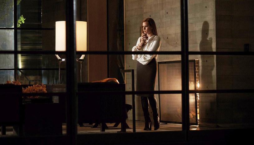 """Tom Ford kazał czekać na swój drugi film siedem długich lat. Debiut uznanego projektanta mody, """"Samotny mężczyzna"""", okazał się jednym z większych kinowych zaskoczeń 2009 roku. Czy """"Zwierzętom nocy"""" udało się powtórzyć ten sukces?"""