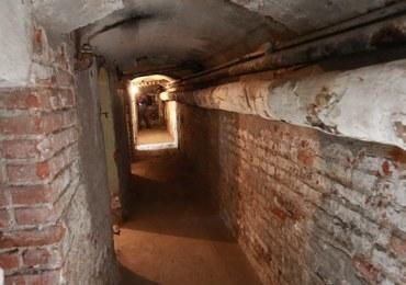 Płock: Podczas prac archeologicznych znaleziono szczątki trzech osób
