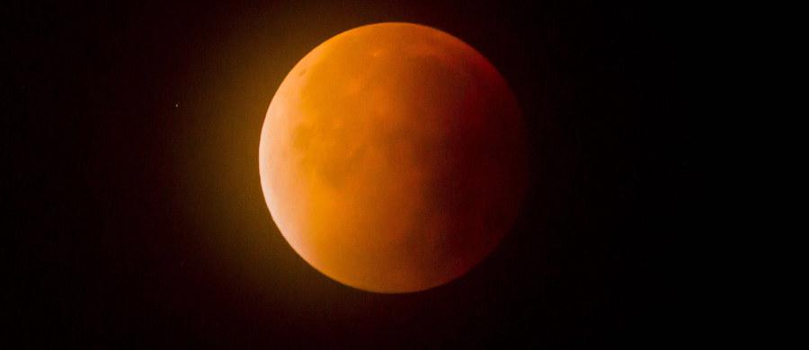 W poniedziałek wieczorem warto spoglądać w niebo. Jeżeli będzie bezchmurne, dostrzeżemy Superksiężyc. Na czym dokładnie polega to zjawisko i dlaczego warto się mu przyjrzeć? Zapytaliśmy o to astronoma - dr Leszka Błaszkiewicza z Uniwersytetu Warmińsko-Mazurskiego w Olsztynie.