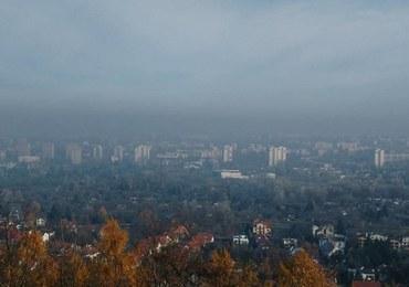 Nie politycy, a krakowscy przedsiębiorcy powalczą ze smogiem!