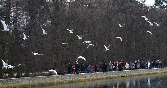 Park Oliwski oraz wszystkie gdańskie cmentarze zostały zamknięte do odwołania. Powodem jest silny wiatr, który może łamać gałęzie drzew rosnących w tych miejscach.