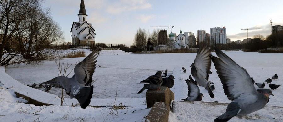 Anomalne mrozy w Rosji, chociaż wciąż to jeszcze oficjalnie jesień. Ostatnia noc w Moskwie to rekord zimna od kilkunastu lat, temperatura spadła do minus 11 stopni.