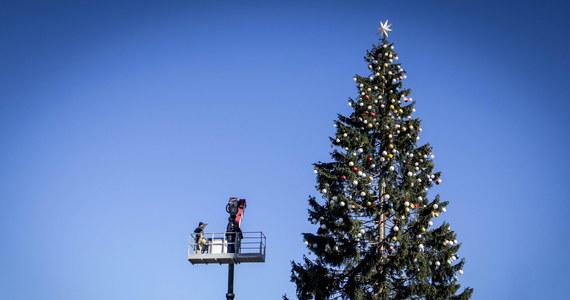 """Świąteczna choinka ustawiona na Placu Weneckim w Rzymie, którą okrzyknięto najbrzydszą we Włoszech, została ponownie udekorowana i poprawiona. Poleciły to zrobić władze miejskie po fali krytyki w prasie, która nazwała drzewko """"smutnym drapakiem""""."""