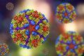 Coraz bliżej szczepionki na chikungunyę