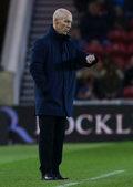Swansea City zwolniło Boba Bradleya