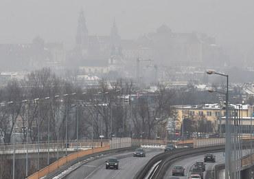 Trujące powietrze nad Polską. Rzecznik Praw Dziecka pisze do resortów ws. walki ze smogiem