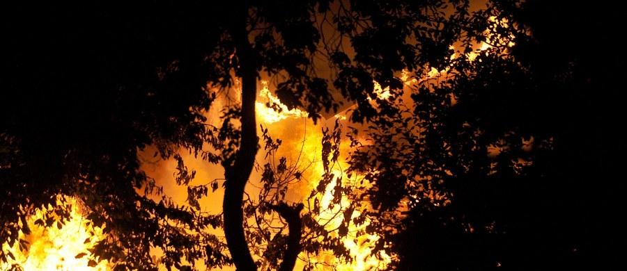 W czwartek i piątek zginęło na skutek pożarów 16 osób, a blisko 40 zostało rannych. Tragiczne żniwo dwóch ostatnich dni to 1/10 zgonów w tym sezonie jesienno-zimowym.