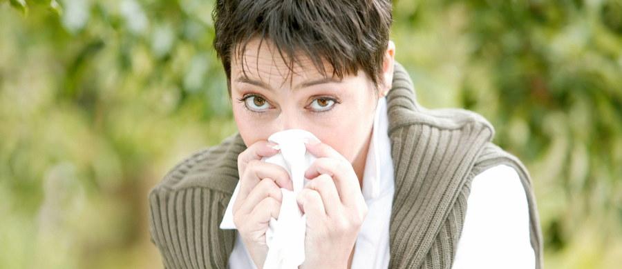 Gwałtownie rośnie liczba chorych na grypę! Od początku roku w całej Polsce odnotowano ponad 292 tysiące zachorowań lub podejrzenia zachorowań. Rok temu było to o prawie połowę mniej - 150 tysięcy zachorowań - wynika z danych Narodowego Instytutu Zdrowia Publicznego.