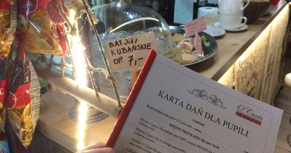 Na kolację zabierz psa. Jedna z wrocławskich restauracji nie tylko wpuszcza do lokalu czworonogi, ale przygotowała także specjalne menu dla pupili. Pomysł już przypadł do gustu mieszkańcom, a właścicielka przyznaje, że to wynik jej miłości do zwierząt.
