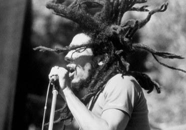 Psy kochają reggae. Bardziej niż… muzykę klasyczną