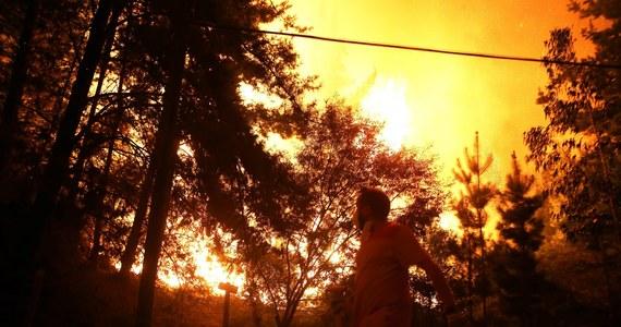 W czwartym tygodniu największego pożaru lasów w historii Chile nocne fotografie satelitarne pokazują ogniska pożaru wzdłuż wybrzeża Pacyfiku na przestrzeni blisko ośmiuset kilometrów, od Valparaiso na północ od stolicy po dalekie południe.