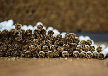 Przestępcy chcieli okraść... nielegalną fabrykę papierosów. CBŚP zatrzymało 16 osób