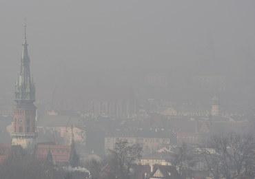 Policja kontra smog: Funkcjonariusze dostaną antysmogowe maski