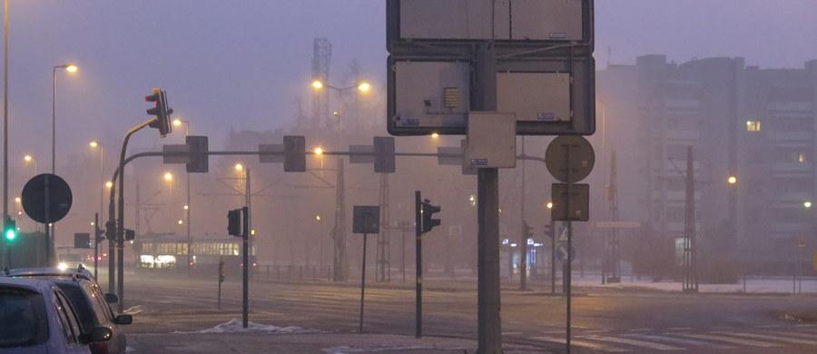Co najmniej 5000 złotych na zakup roślin pyłochwytnych chce zebrać Kraków w ramach akcji crowdfundingowej, która ma pomóc w walce ze smogiem. Do zebranej kwoty urząd miasta dołoży sumę trzy razy wyższą. Zakupione rośliny, które według ekspertów pochłaniają zanieczyszczenia na powierzchni 10 metrów kwadratowych, trafią do zainteresowanych akcją przedszkoli i szkół.