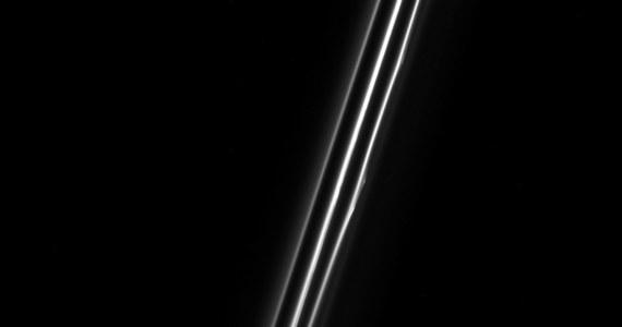 """NASA opublikowała nowe zdjęcie pierścienia F Saturna, wykonane przez sondę Cassini niespełna dwa miesiące temu, 18 grudnia 2016 roku. Na obrazie zarejestrowanym przez kamerę długoogniskową sondy widać zarówno zasadniczy pierścień, jak i trzy dodatkowe pasy kosmicznego gruzu. Te trzy słabsze """"pierścienie"""" nie są jednak niezależnymi strukturami, lecz obrazem otaczających główny pas spiral pyłu, wyrwanych z głównego pierścienia przez oddziałujące z nim księżyce."""