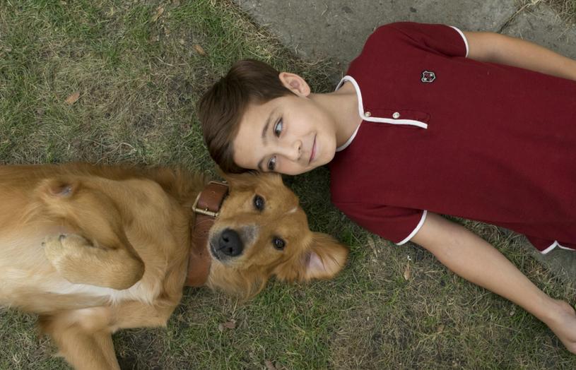 """""""Był sobie pies"""" to wzruszająca i zabawna opowieść o tym, że każdy pies ma do wypełnienia misję i to niejedną. Film pojawi się na ekranach polskich kin 17 lutego 2017 roku."""