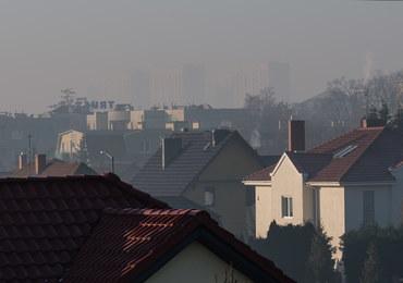 Co 15 minut ktoś w Polsce umiera przez zanieczyszczone powietrze