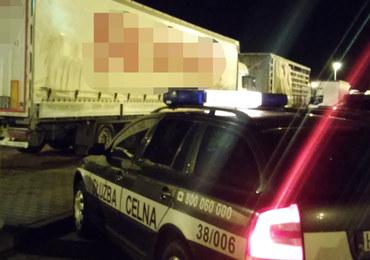 Syryjczycy, Irakijczycy i Turcy byli w ciężarówce zatrzymanej przy A4