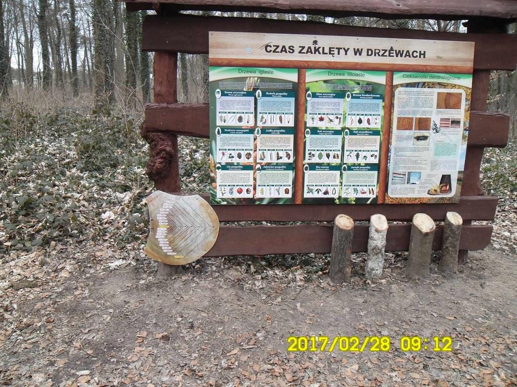 Zakład Usług Komunalnych w Szczecinie