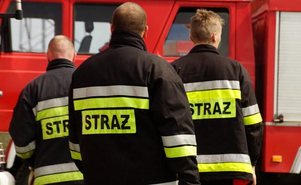 59-letni mężczyzna zginął w eksplozji w zakładach chemicznych w Krupskim Młynie w Śląskiem. Produkowane są tam materiały wybuchowe. Sygnał w tej sprawie dostaliśmy na Gorącą Linię RMF FM.