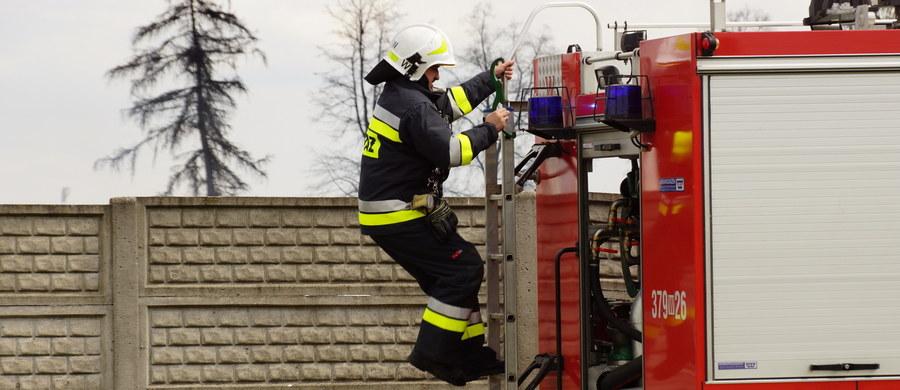 Nikt nie ucierpiał w pożarze, który wybuchł o poranku w przedszkolu przy ul. Lwowskiej w Wadowicach - donosi reporter RMF FM Paweł Pawłowski. W budynku było 17 dzieci i 19 pracowników - wszystkich bezpiecznie wyprowadzono na zewnątrz.