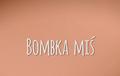 Bombka-miś