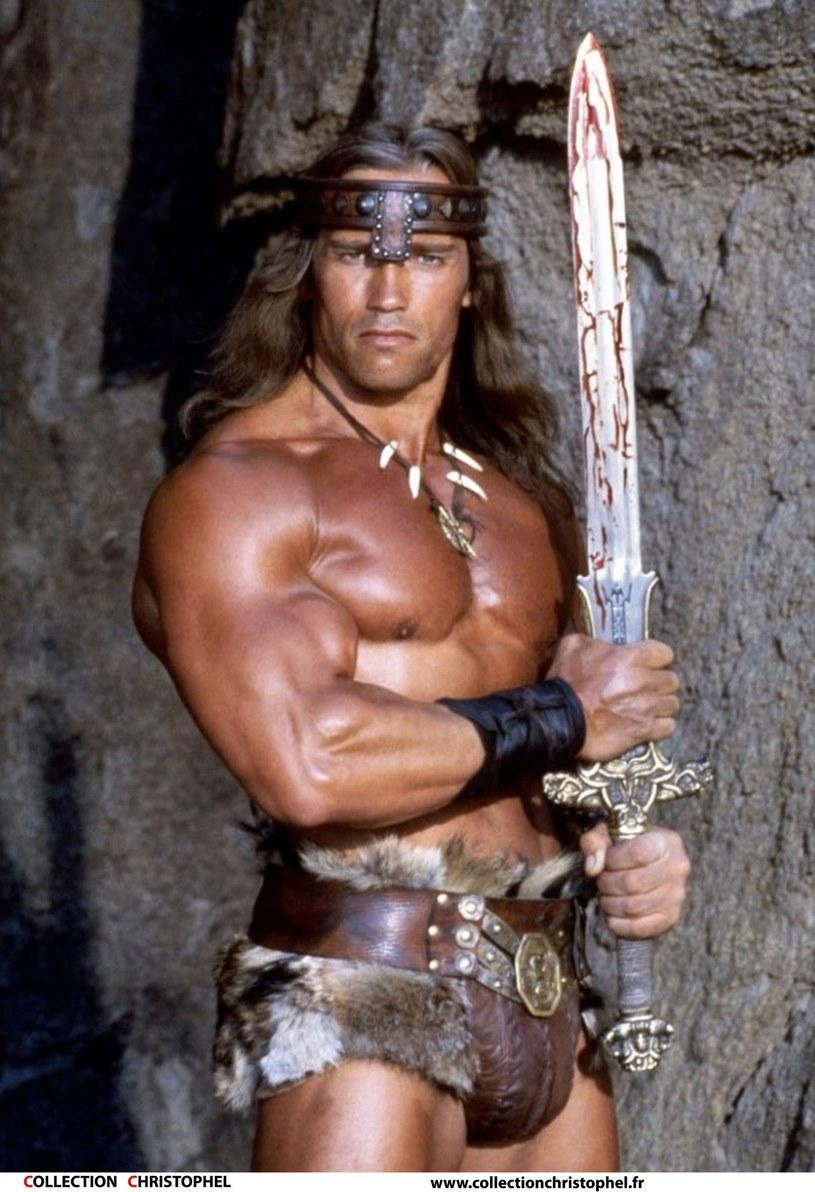 """Reżyser Paul Verhoeven chce wyreżyserować trzeci film serii """"Conan Barbarzyńca"""". W głównej roli miałby wystąpić Arnold Schwarzenegger."""