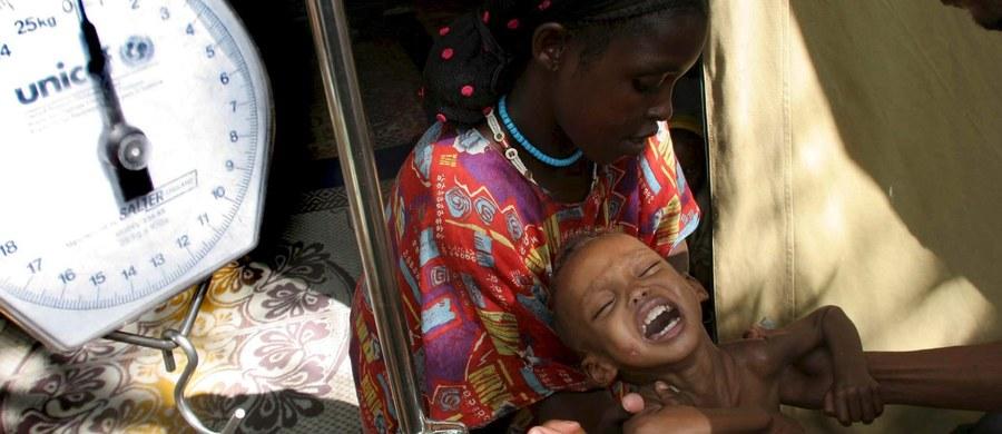Około 20 milionom ludzi w Jemenie, Sudanie Południowym, Nigerii i Somalii grozi śmierć głodowa - oświadczył w piątek w Nowym Jorku koordynator ONZ ds. humanitarnych Stephen O'Brien.