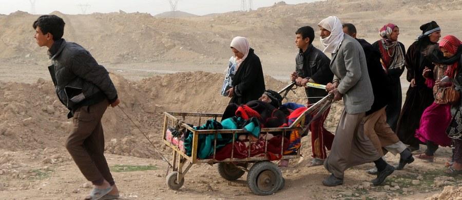 Dżihadyści z Państwa Islamskiego (IS) broniący się w Mosulu znaleźli się w pułapce, bowiem wspierane przez USA irackie wojska całkiem odcięły dostęp do miasta z zewnątrz. Wszyscy dżihadyści zginą - powiedział specjalny wysłannik USA ds. walki z IS.