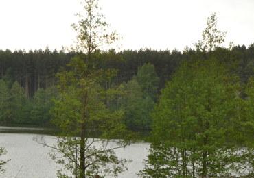 Zanieczyszczenie jeziora w Ostrowie Wielkopolskim. Winna firma opróżniająca szamba