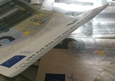 Będzie unijne wsparcie dla rolników w związku z ASF. Pieniądze mniejsze, niż oczekiwaliśmy