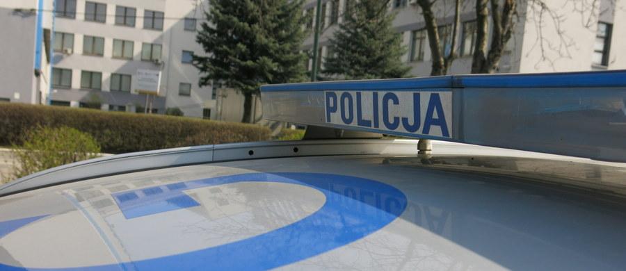 Policja ze Strzelec Opolskich wyjaśnia okoliczności pogryzienia 3-letniej dziewczynki przez bulteriera. Dziecko w ciężkim stanie trafiło do szpitala w Opolu. Jak zapewnia ojciec dziewczynki, do którego należy pies, bulterier nie był szczepiony, ale nie jest agresywny.