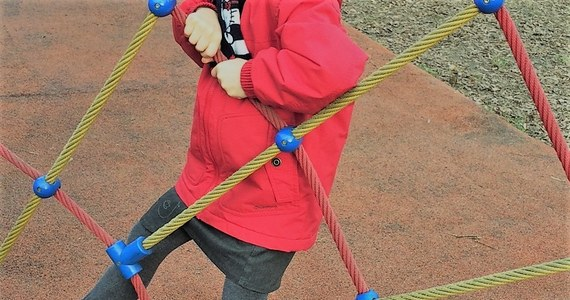 Warszawska prokuratura wszczęła śledztwo ws. zatrucia pokarmowego przedszkolaków z Chotomowa. Śledczy mają wyjaśnić okoliczności sprawy i zbadać, kto jest za to odpowiedzialny. Gmina Jabłonna podała, że w szpitalach przebywa 47 dzieci.