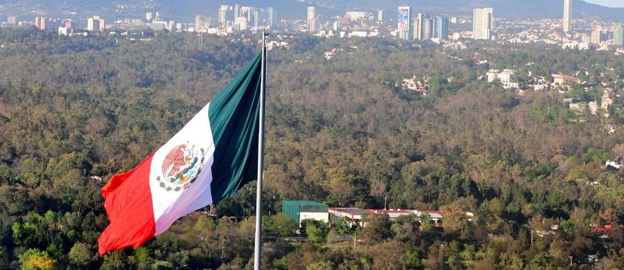 """Niektórzy politycy i eksperci w Meksyku obawiają się, że Rosja może wpłynąć na wyniki przyszłorocznych wyborów w ich kraju - informuje amerykański serwis """"The Hill"""". Niepokój potęgują doniesienia na temat domniemanego zaangażowania Moskwy w czasie ostatnich wyborów prezydenckich w Stanach Zjednoczonych."""