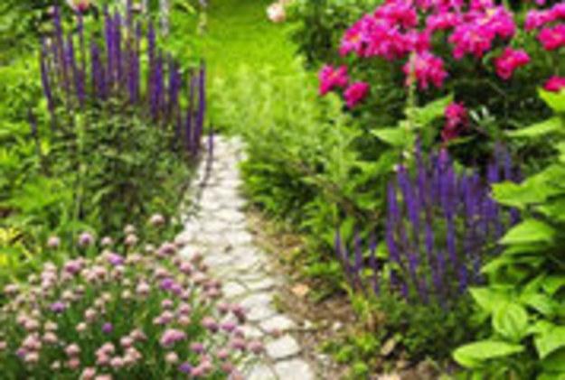 Niezawodny sposób na pozbycie się chwastów z ogrodu