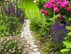 Dzięki temu kwiaty w ogrodzie będą rosły jak szalone