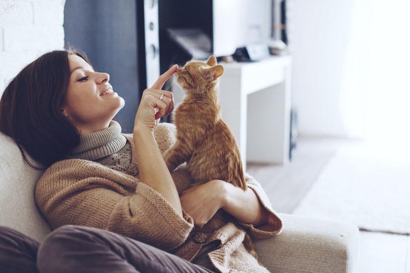 Dawno minęły czasy, gdy kot był wyłącznie pogromcą mieszkających w gospodarstwie myszy. Dziś naszych podopiecznych traktujemy jak członków rodziny – dbamy o odpowiednio zbilansowane posiłki, regularnie odwiedzamy gabinety weterynaryjne i  poświęcamy sporo czasu na  zabawę.