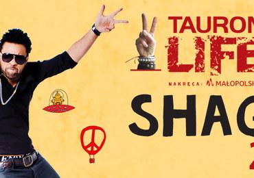 Shaggy i Mesajah na Life Festival Oświęcim 2017