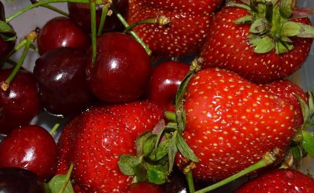 """Po dwóch latach spadków znowu przybywa producentów ekologicznej żywności. W ubiegłym roku wydaliśmy na nią o 100 mln zł więcej niż rok wcześniej - informuje """"Dziennik Gazeta Prawna""""."""