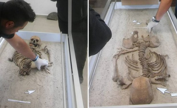 """Słynny """"wampir"""" z Kamienia Pomorskiego przejdzie badania DNA. Odnaleziony kilka lat temu szkielet mężczyzny, na którym zastosowano praktyki antywampiryczne - przebito mu kończyny, a w zęby wetknięto kawałek cegły - trafi w ręce medyków."""