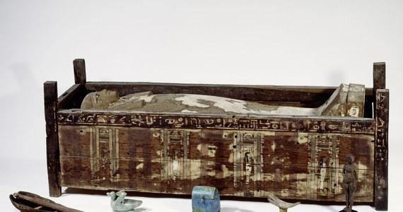 """Międzynarodowy zespół naukowców przeprowadził pierwsze badania genomu egipskich mumii. Ich analiza pokazała, że o ile współcześni Egipcjanie są bliżej spokrewnieni z ludami Afryki sub-saharyjskiej, starożytni mieszkańcy Egiptu mieli więcej wspólnego z narodami zamieszkującymi obszar Bliskiego Wschodu a nawet Europy. Autorzy pracy opublikowanej w czasopiśmie """"Nature Communications"""" za swój największy sukces uznają samo rozkodowanie DNA mumii, które jeszcze niedawno uznawano za niemożliwe."""