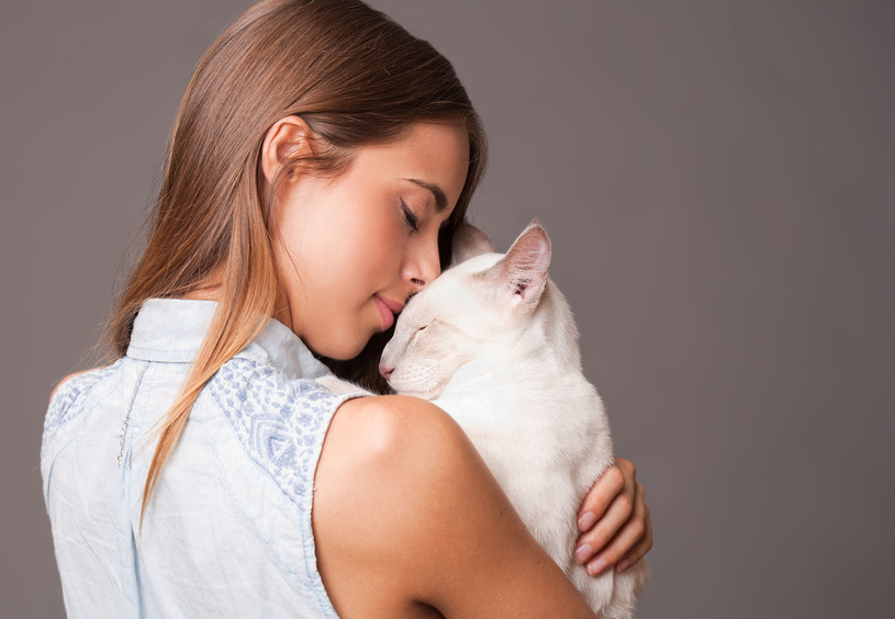 Kot czy pies? To odwieczne pytanie miłośników zwierząt, którzy planują przygarniecie czworonoga.  Jeśli jednak myślisz o kociaku, poznaj wszystkie plusy tego tajemniczego i niezależnego, a zarazem bardzo czułego stworzenia. Dzięki temu utwierdzisz się w przekonaniu, że to może być najlepszy wybór!